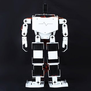 Humanoid Robot -17 Degree of Freedom