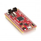 ARM7 Stick - LPC2138