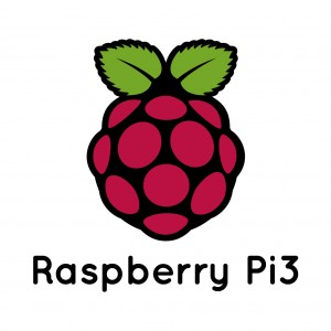 Nginx raspberry pi wordpress